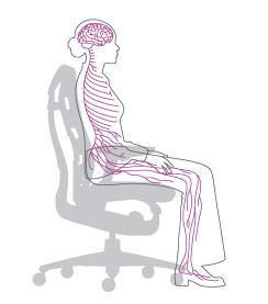 Dessin technique Embody posture 1